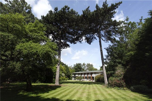 Thumbnail Detached house for sale in Warren Park, Kingston Upon Thames, Surrey