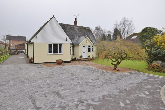 Thumbnail Bungalow to rent in Sandyhurst Lane, Ashford, Kent