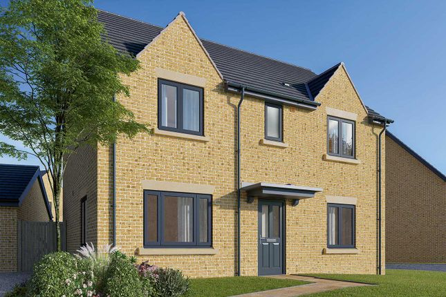 "Thumbnail Link-detached house for sale in ""The Leverton"" at Field Road, Ramsey, Huntingdon"