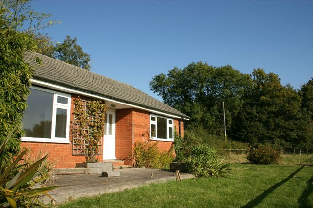 Thumbnail Bungalow to rent in Bighton Hill, Ropley, Alresford, Hampshire