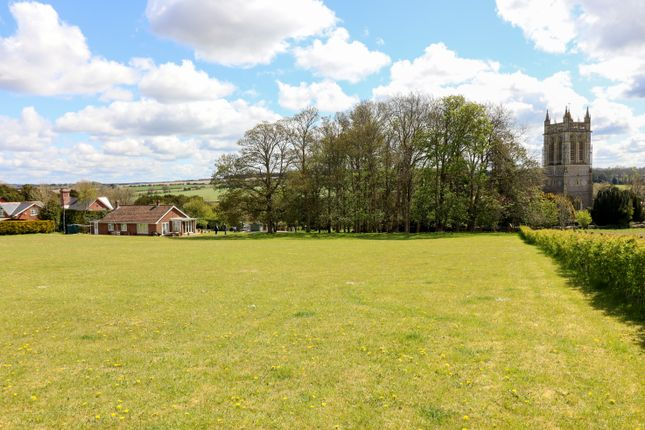 Thumbnail Detached bungalow for sale in Northington, Alresford