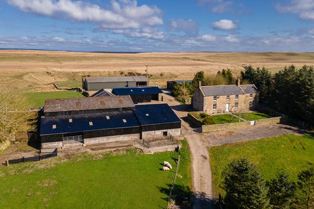 Thumbnail Farmhouse for sale in Low Tipalt Farm, Greenhead, Northumberland