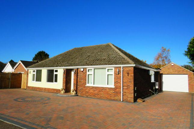 Thumbnail Detached bungalow to rent in West Drive, Brandon