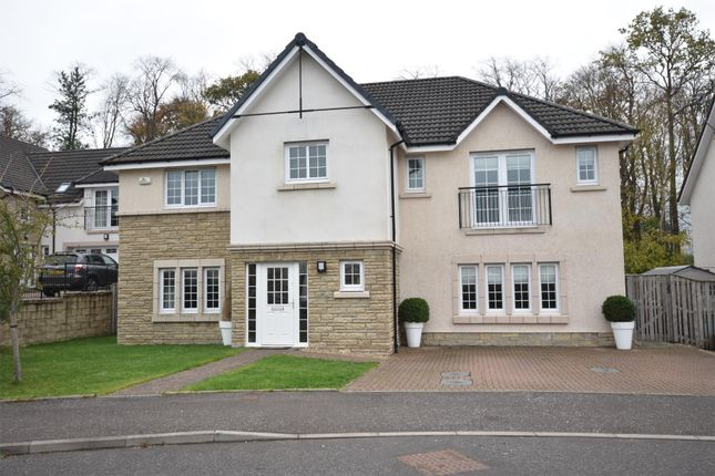Thumbnail Detached house for sale in Lapwing Crescent, Motherwell