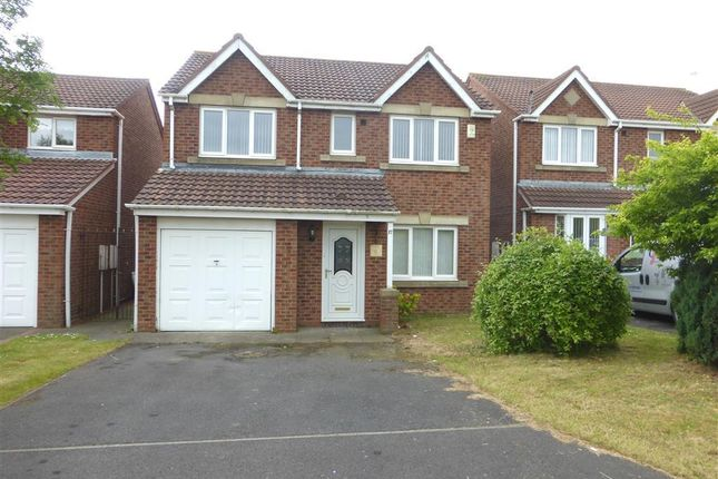 Thumbnail Detached house to rent in Stonechat Close, Hartlepool