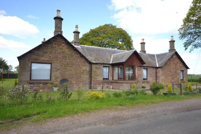 Thumbnail Bungalow to rent in Meigle, Blairgowrie