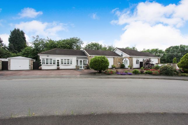 Thumbnail Bungalow for sale in Maytree Drive, Kirby Muxloe, Leicester