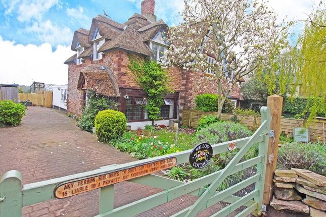 Thumbnail Cottage for sale in Mamhead, Exeter