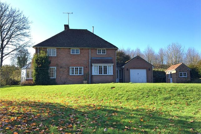 Thumbnail Detached house to rent in Alton Pancras, Dorchester