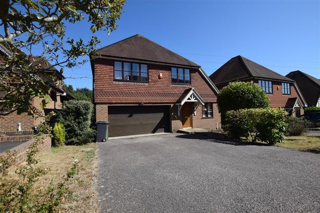 Thumbnail Detached house to rent in Beachy Head View, St. Leonards-On-Sea