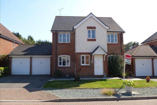 Thumbnail Property to rent in Thornton Close, Willesborough, Ashford
