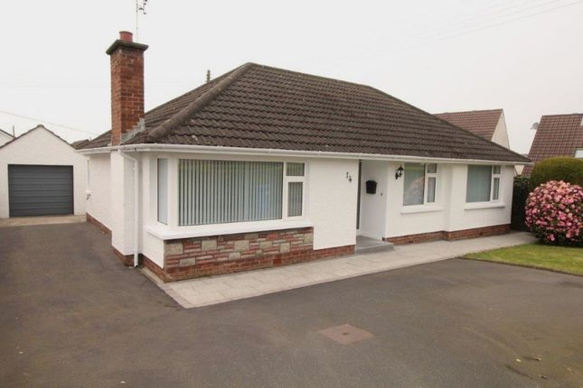 Thumbnail Bungalow to rent in Dorrandale Road, Conlig, Newtownards