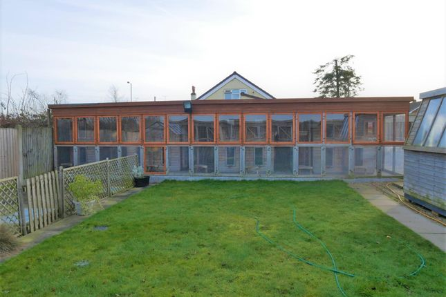Thumbnail Commercial property for sale in Kennels, Cattery & Equestrian Businesses NG22, Walesby, Nottinghamshire