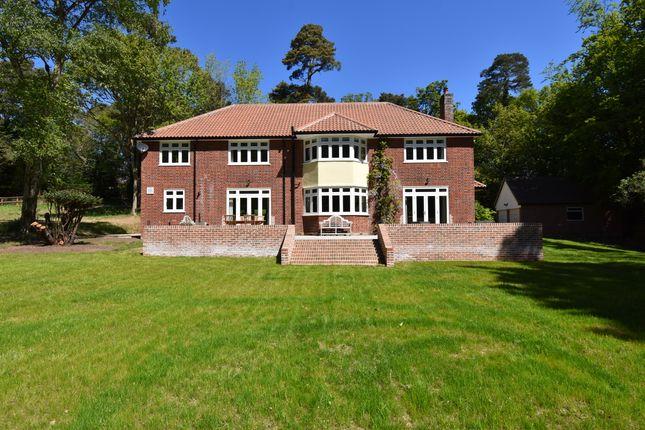 Thumbnail Detached house for sale in Leeks Hill, Melton, Woodbridge