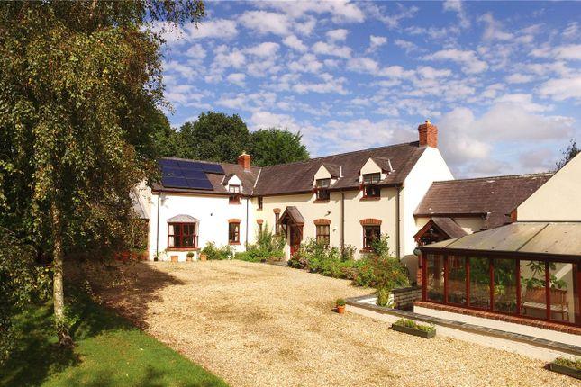 Thumbnail Detached house for sale in Brynsiriol, Llechryd, Cardigan, Ceredigion