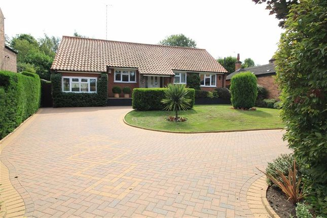 Thumbnail Detached bungalow for sale in Main Street, Lambley, Nottingham