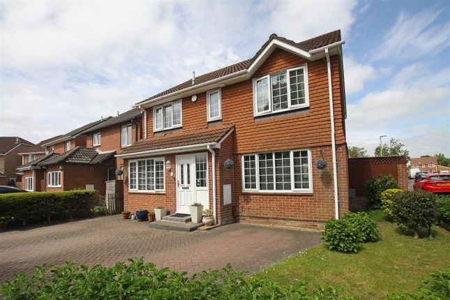 Thumbnail Detached house for sale in Spetisbury Close, Bournemouth