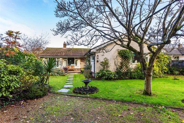 Thumbnail Detached bungalow for sale in Rectory Garden, Church Lane, Cranleigh