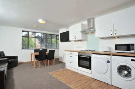 Thumbnail Flat to rent in Thornton Court, Thornton Hill, Exeter