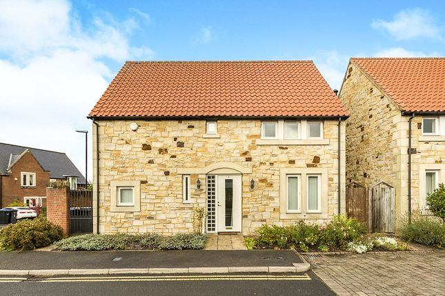 Thumbnail Detached house to rent in The Steadings, Durham