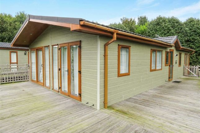 Thumbnail Bungalow for sale in South Road, Wooler
