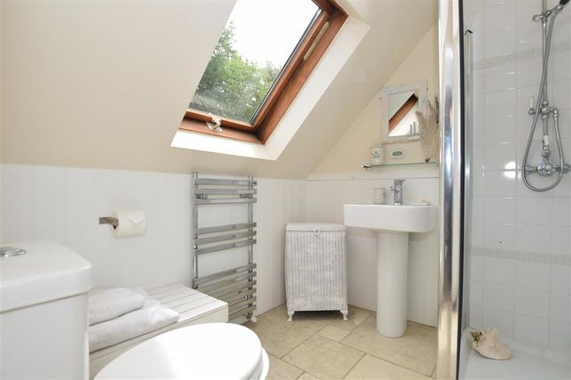 Annex En-Suite Shower Room