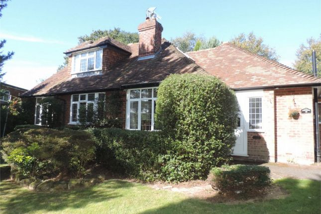 Thumbnail Detached house for sale in The Highlands, Bexhill On Sea, East Sussex