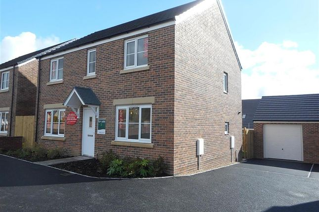 "Thumbnail Detached house for sale in ""The Chedworth"" at Luscombe Road, Paignton"