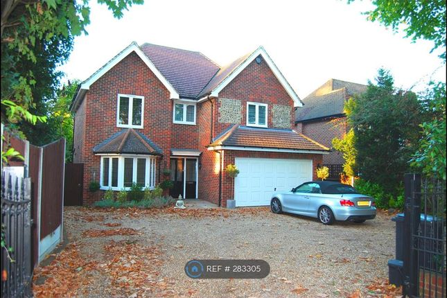 Thumbnail Detached house to rent in Foxley Lane, Purley