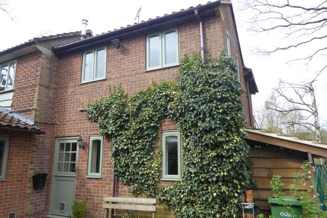 Thumbnail Flat to rent in Kiln Lane, Binfield Heath