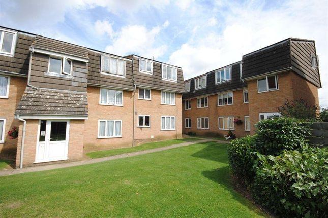 Thumbnail Flat to rent in Ozier Court, Saffron Walden