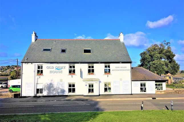 Thumbnail Detached house for sale in Griggs Quay, Hayle