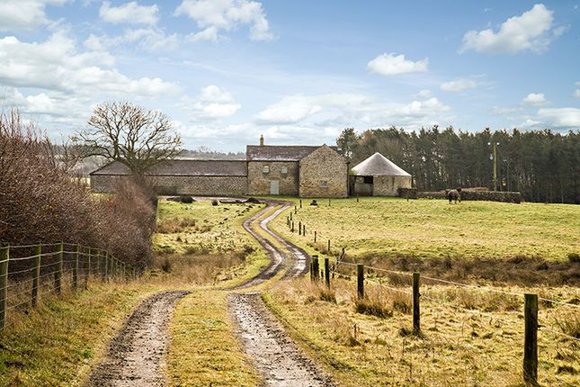 Thumbnail Barn conversion for sale in Newton Fell Barn, Newton, Stocksfield, Northumberland