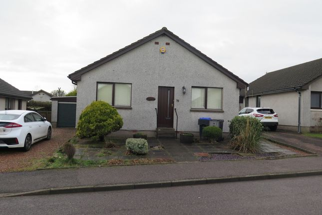 Thumbnail Detached house to rent in Cliff Place, Kirkton, St. Cyrus, Montrose