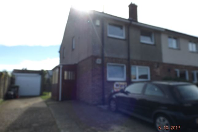 Thumbnail Semi-detached bungalow to rent in Marsh View, Hythe