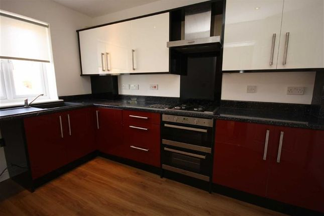Thumbnail Terraced house to rent in Waterloo Street, Hull