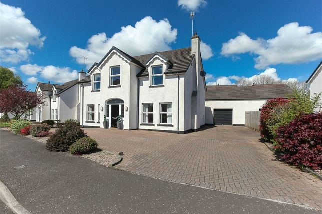 Thumbnail 4 bed detached house for sale in Motte Farm, Broughshane, Ballymena, County Antrim