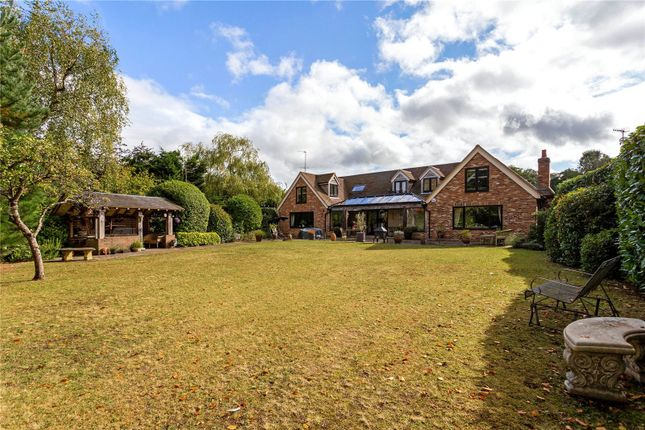 Thumbnail Detached house for sale in Oxted Green, Milford, Godalming, Surrey