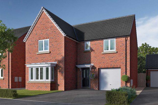 "Thumbnail Detached house for sale in ""The Grainger"" at Ripon Road, Killinghall, Harrogate"