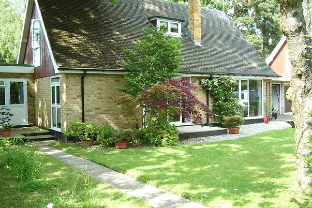 Thumbnail Detached house for sale in Birchside, Edgcumbe Park, Berkshire