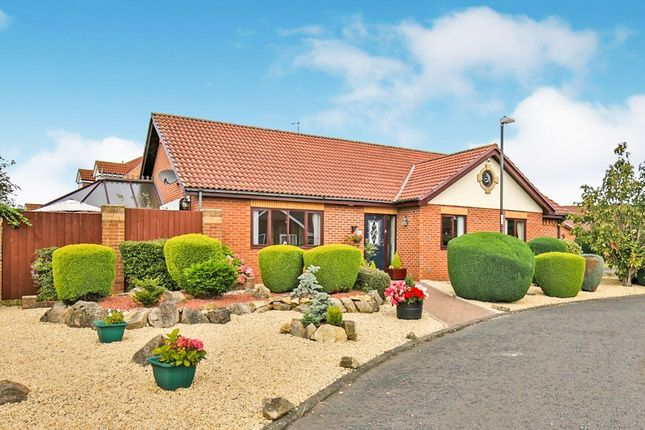 Thumbnail Bungalow for sale in Paddock Close, Shiney Row, Houghton Le Spring