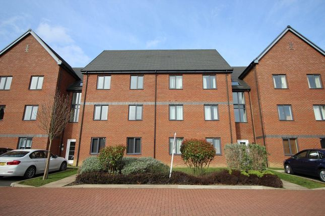 Thumbnail Property to rent in Kirkistown Close, Rugby