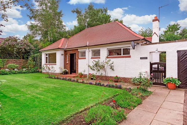 "Thumbnail Detached bungalow for sale in ""Dorlinn"", 38 Dalhousie Road, Eskbank"