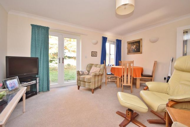 Thumbnail Detached bungalow for sale in Old Basing, Basingstoke