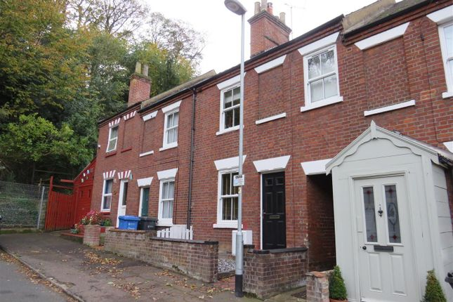 Thumbnail Terraced house to rent in Stuart Road, Norwich