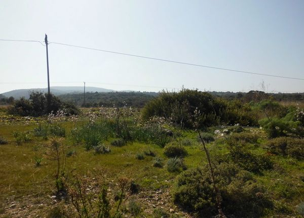 Thumbnail Land for sale in Karpaz, Famagusta, Cyprus