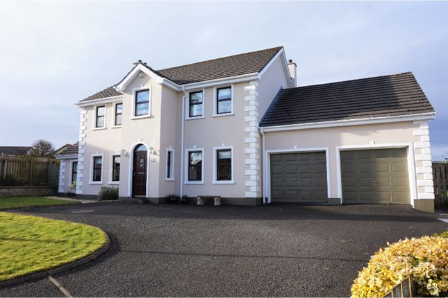 Thumbnail Detached house for sale in College Park, Coleraine