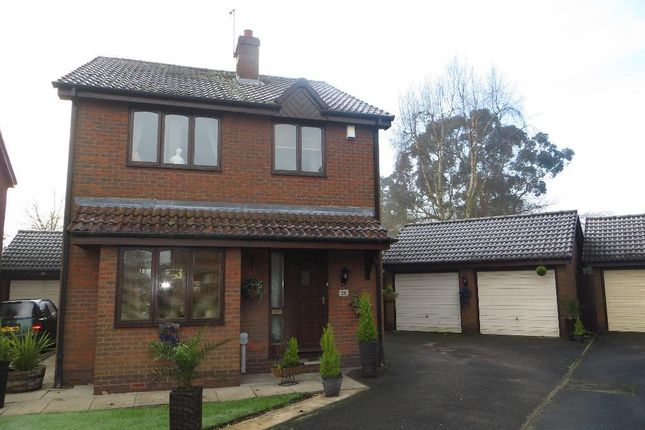 Thumbnail Detached house for sale in Spencer Close, Cottingham