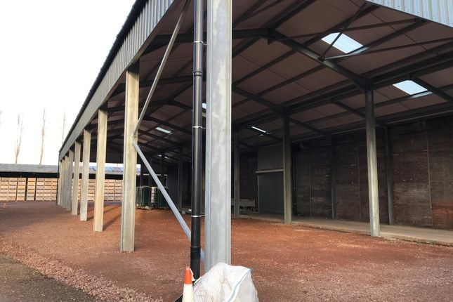 Thumbnail Light industrial to let in To Let - Storage Warehouse, Glewstone, Ross-On-Wye
