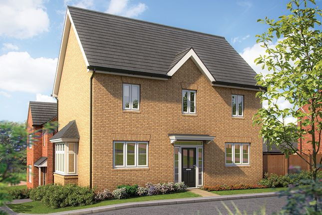 "Thumbnail Detached house for sale in ""The Chestnut"" at Irthlingborough Road, Wellingborough"